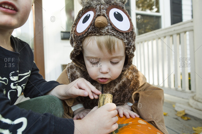 Toddler boy dressed up as an owl closely inspects Halloween pumpkin
