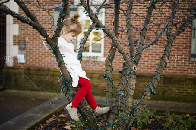 A cute little girl sits in a tree and gazes down