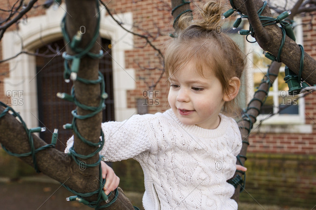 A cute little girl sits in a tree at a park