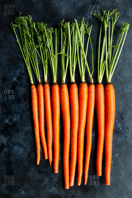 Carrots on a dark background