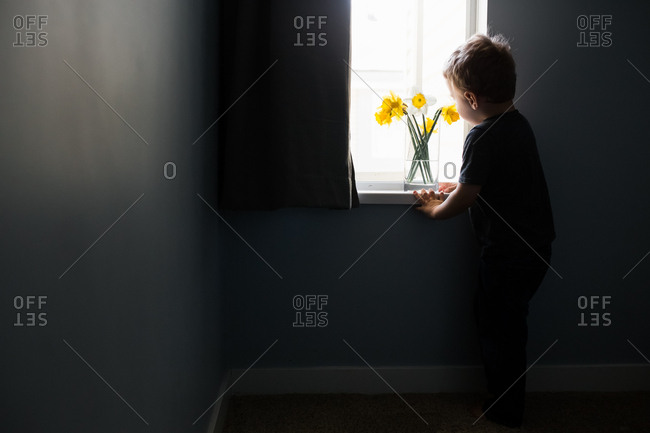 Little boy standing by window with flowers in a vase