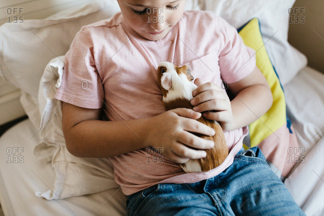 Boy sitting on bed petting guinea pig