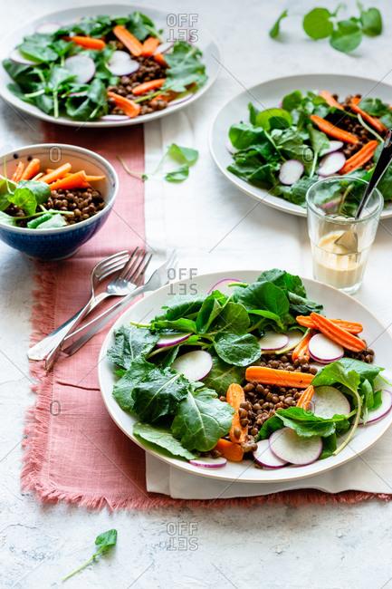 Lentil salad served with greens