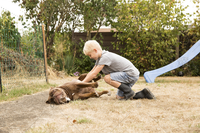 Boy stroking Old English Bulldog at playground in garden