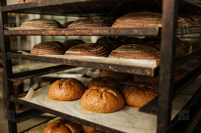 Fresh baked artisanal loaves of bread on a rack in a bakery