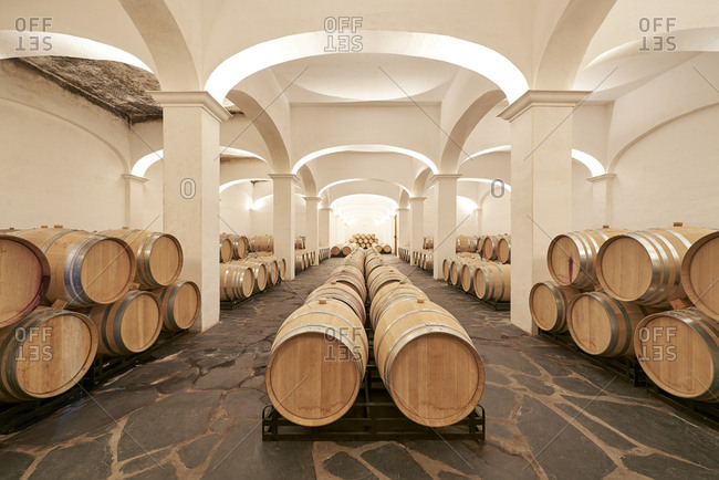 Wine cellar with aging wine barrels in Portugal