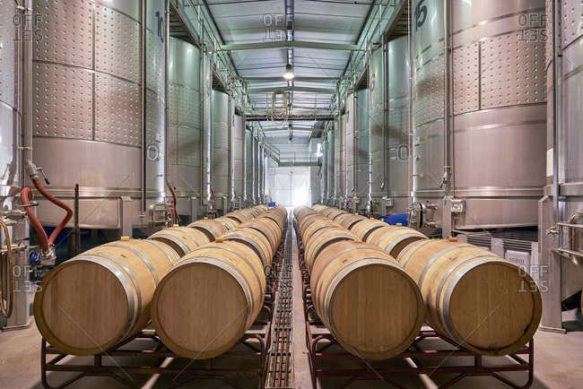 Fermentation tanks and aging wine barrels