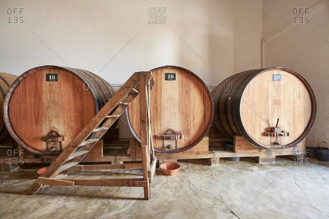 Aging wine barrels in Portugal