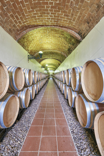 Wine cellars with aging barrels