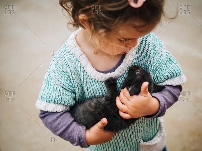 tender scene of cute little girl holding and rocking a small black pussycat