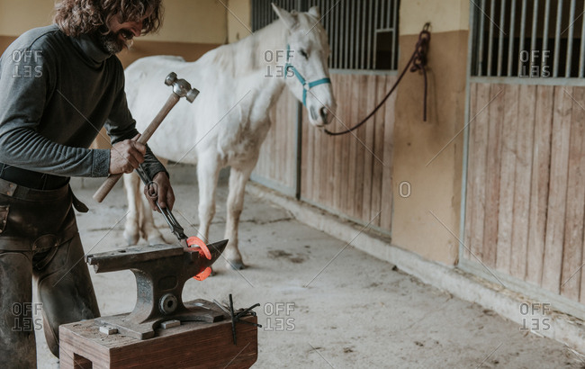 Adult farrier using hammer and tongs to forge hot horseshoe on portable anvil near stable on ranch