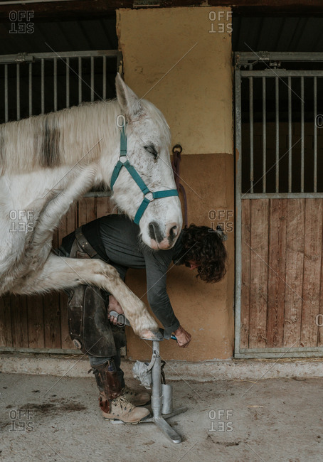 Unrecognizable adult man using knife to remove dirt from hoof of horse on ranch