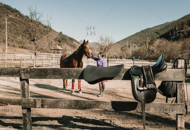Young female stroking beautiful horse during horseback riding lesson on sunny day on ranch