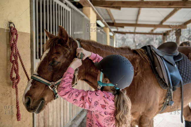 Cute little girl in helmet putting brushing a white horse while standing near stalls in stable during horseback riding lesson on ranch