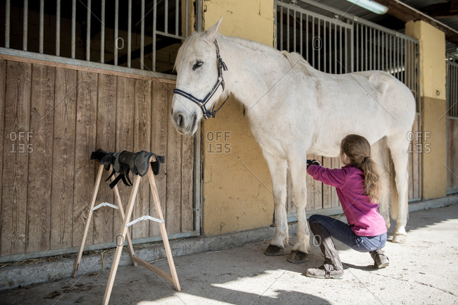 Anonymous little girl taking care of horse near stable after lesson on sunny day on ranch