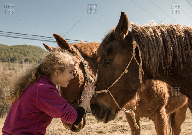Woman taking care of horse near stable after lesson on sunny day on ranch