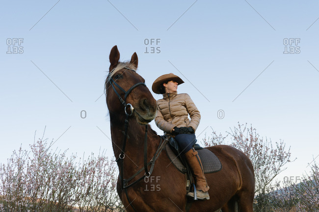Female in hat looking away and sitting on beautiful horse against cloudless blue sky in meadow