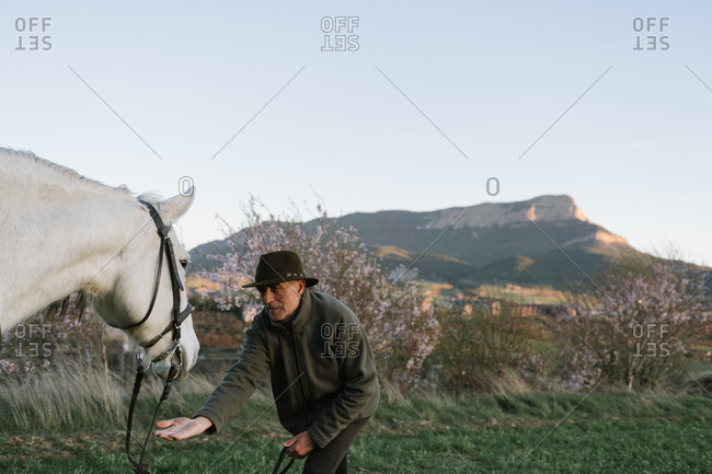 Old man in hat looking away and sitting on beautiful horse against cloudless blue sky in meadow