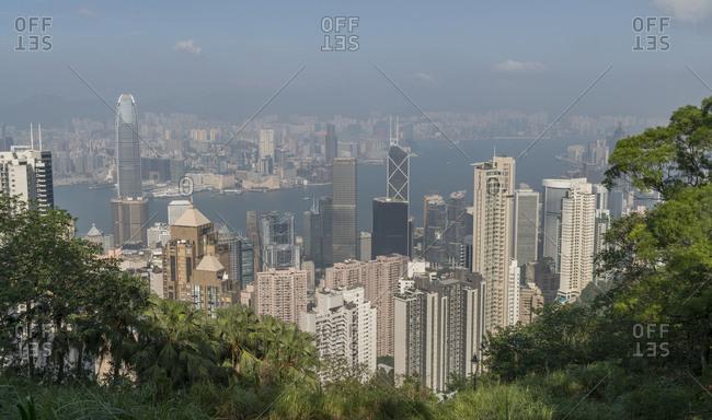 China, Hong Kong, - November 11, 2018: Cityscape behind trees in Hong Kong, China
