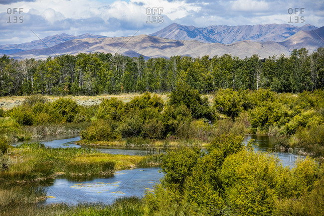 River by forest in Picabo, Idaho, USA