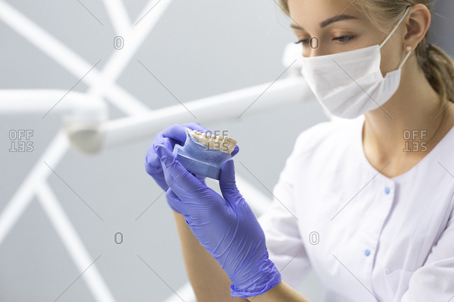Dental assistant holding model teeth