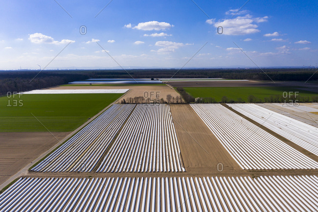 Germany- Hesse- Aerial view of asparagus field with white plane