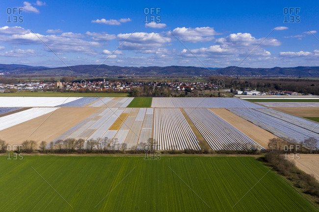 Germany- Hesse- Bergstrasse- Aerial view of asparagus field with white plane