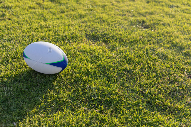 Rugby ball in the ground on a sunny day