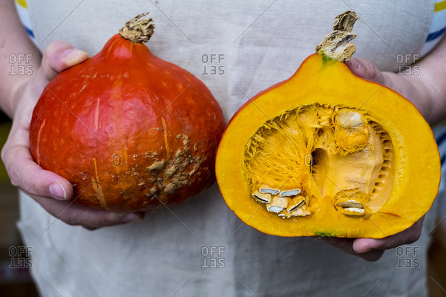 Close up of person holding pumpkin with orange flesh cut in half.