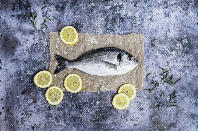 High angle close up of a fresh sea bream, slices of lemon and fresh rosemary.