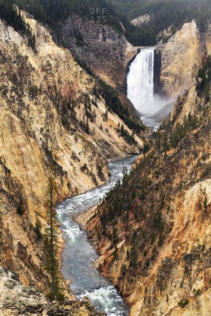 Lower Yellowstone falls, Yellowstone National Park, Wyoming, USA