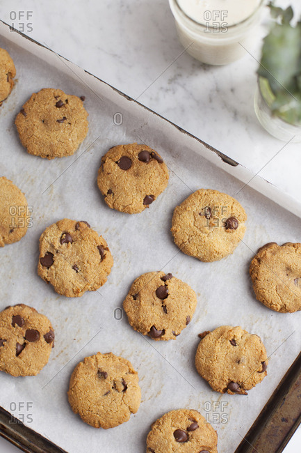 Baking tray lined with coconut based chocolate chip cookies