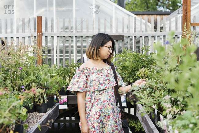 Woman choosing flowers in garden center