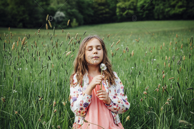 Portrait of girl with blowball on a meadow