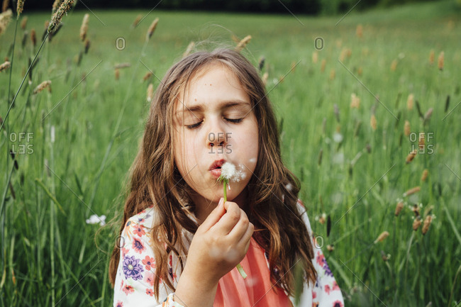 Portrait of girl blowing blowball on a meadow