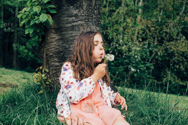 Portrait of girl sitting on a meadow blowing blowball