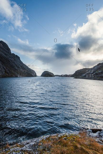 Norway- Lofoten Islands- Nusfjord- coast and sea