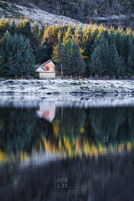 Norway- Lofoten Islands- frozen feather at water's edge