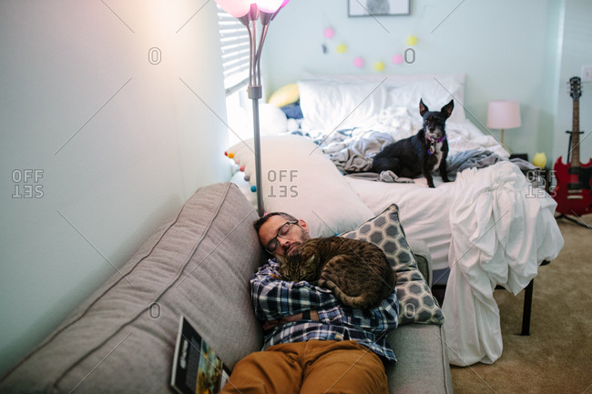 Man sleeps on couch with cat while dog sits on bed