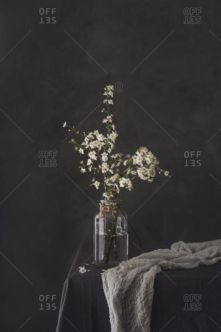 White flowers on a vase