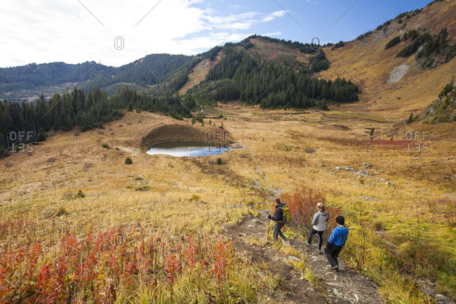 Three active people hike through golden alpine meadow.