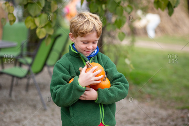 Blonde boy holding small pumpkins in arms outdoors looking down