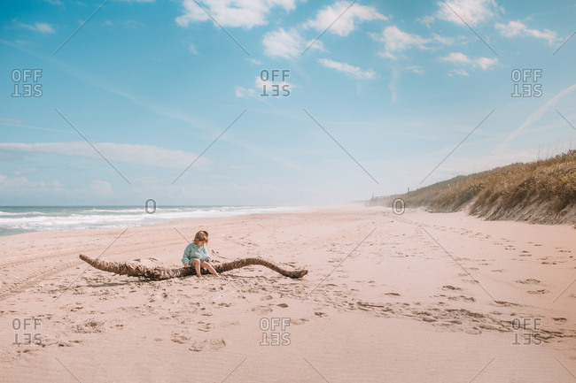 Toddler sits on driftwood on beach
