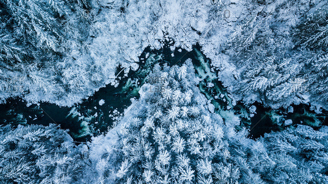 Winter river in North Bend,  Washington