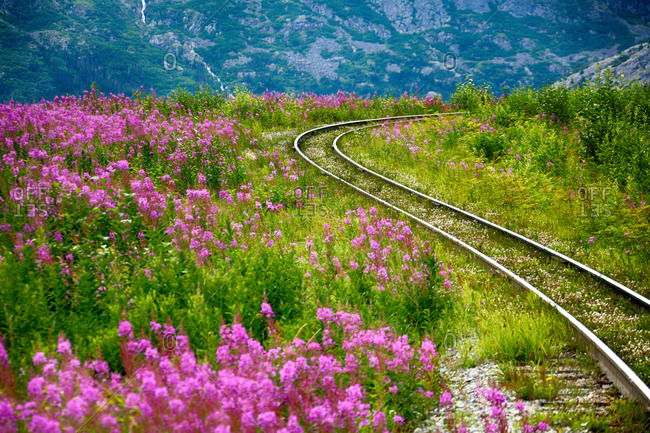 Railway track in the mountains