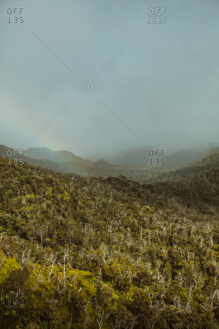 Rainbow over mountain and forest in Hawaii