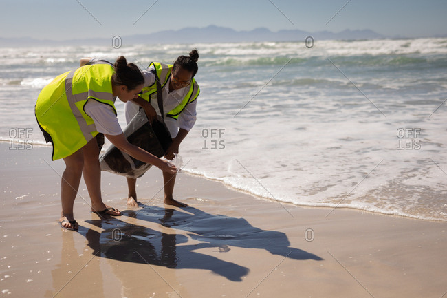 Front view of mixed race female volunteers cleaning beach on a sunny day