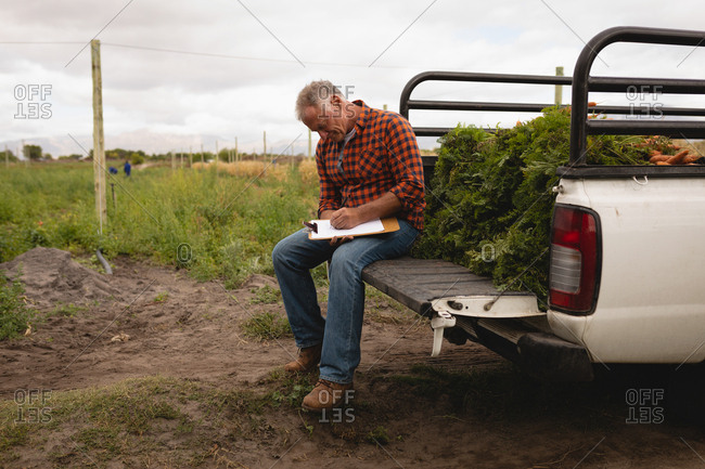 Side view of Caucasian male farmer maintaining the record of plants on clipboard while sitting on backside of car