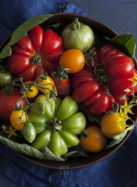 Fresh summer tomatoes in metal bowl