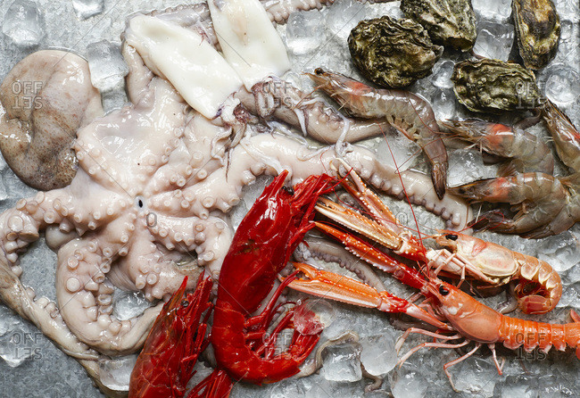 Platter of raw seafood - Offset